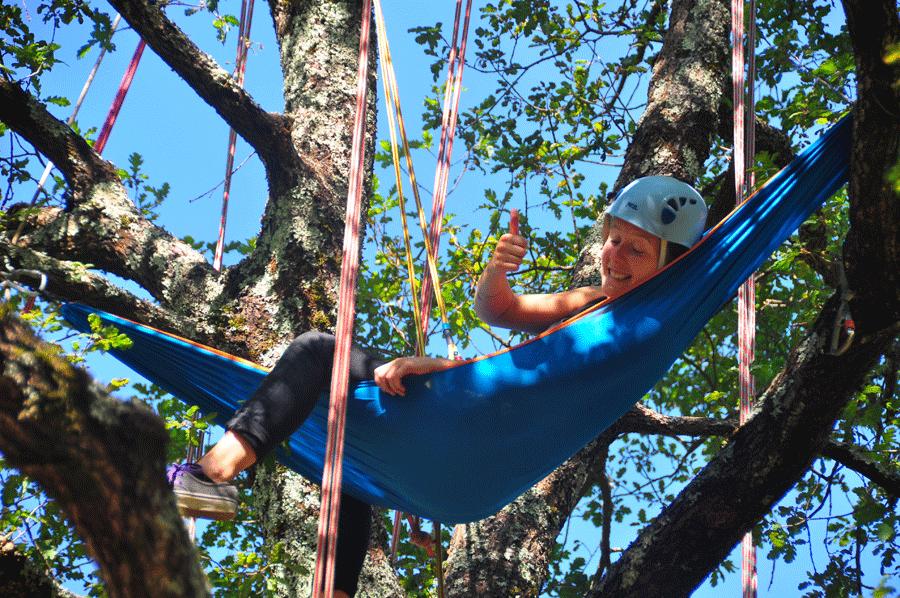 Bivouac dans les arbres (Lozère)